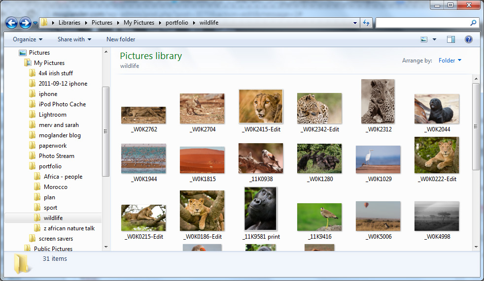 manage digital photo windows explorer