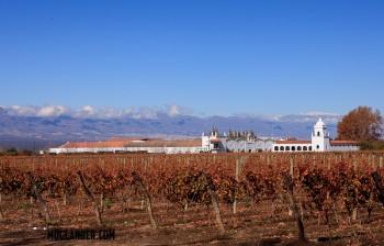 Cafayete winery in Salta, Argentina