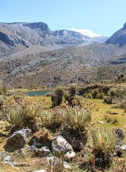 Cocuy landscape