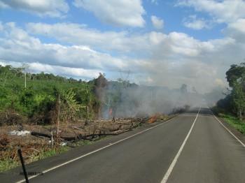 Rainforest burning in Venezuela
