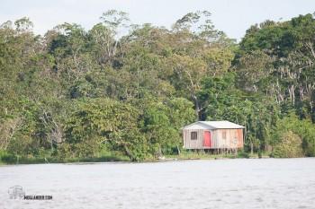 Amazon home.